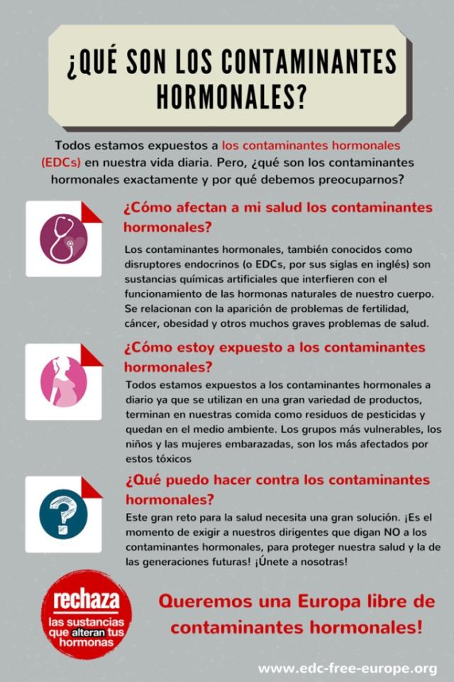 infographic ES Final